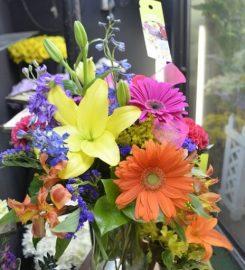 Lady Di's Florist