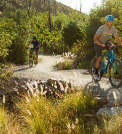 Havasu Bike & Fitness
